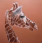 giraffe-mh.png